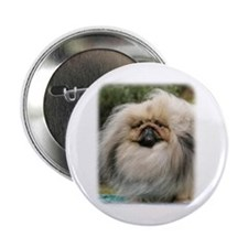 "Pekingese 9Y201D-070 2.25"" Button"
