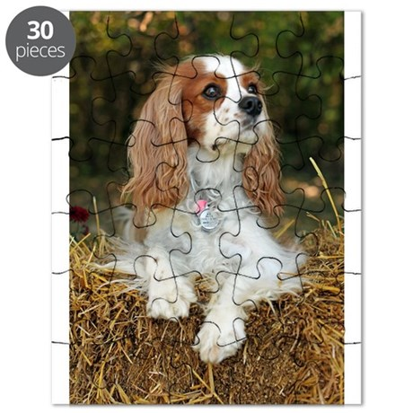 Cavalier King Charles Puzzle