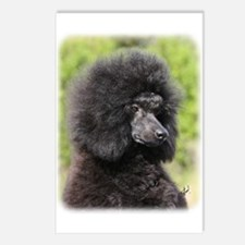 Poodle 9Y788D-048 Postcards (Package of 8)