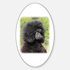 Poodle 9Y788D-048 Sticker (Oval)