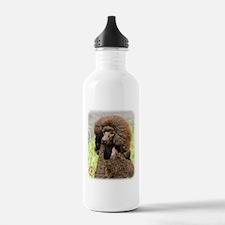 Poodle Standard 9R063D-099 Water Bottle