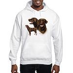 Chocolate Labrador Retriever Hooded Sweatshirt