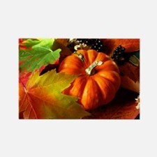 .elements of autumn. Rectangle Magnet