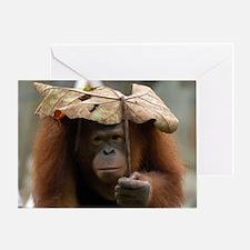 Doris the Orangutan Greeting Card