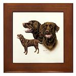 Chocolate Labrador Retriever Framed Tile