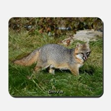 Gray Fox Mousepad