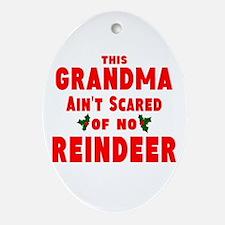 Grandma Got run over Ornament (Oval)