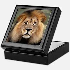 Lion Photograph Keepsake Box
