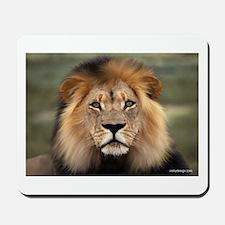 Lion Photograph Mousepad
