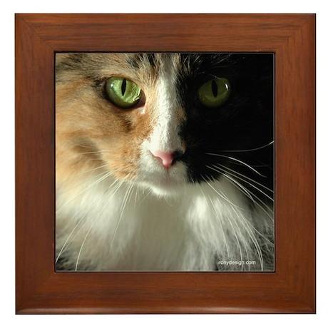 The Cat's Eyes Framed Tile