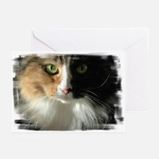 The Cat's Eyes Greeting Cards (Pk of 10)