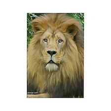 Lion - close up Rectangle Magnet