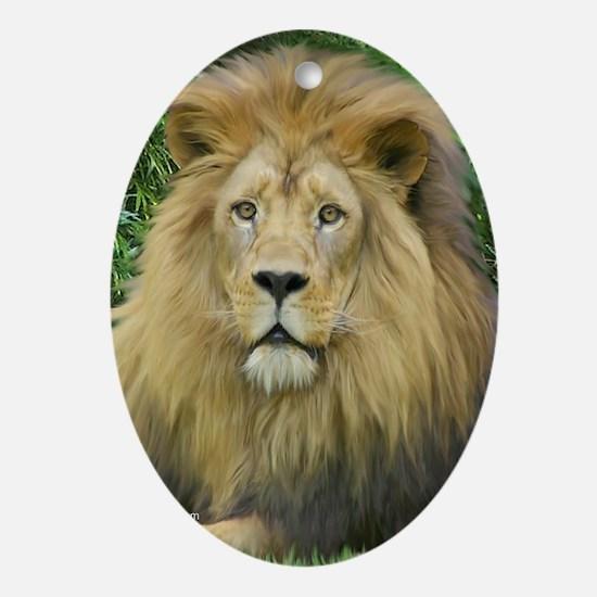 Lion - close up Ornament (Oval)