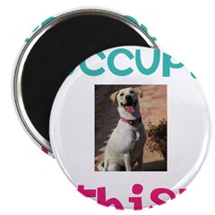 Occupy This Dog! Magnet