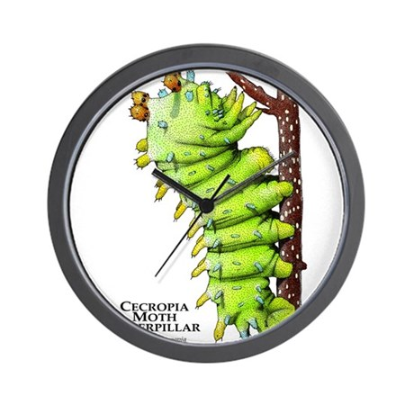 Cecropia Moth Caterpillar Wall Clock
