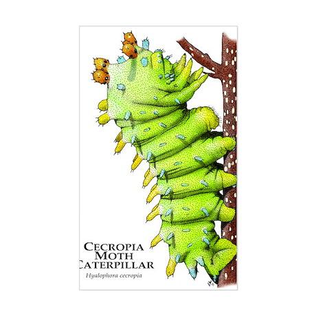 Cecropia Moth Caterpillar Sticker (Rectangle)