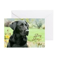 Dog Dayz 2012 Greeting Cards (Pk of 10)