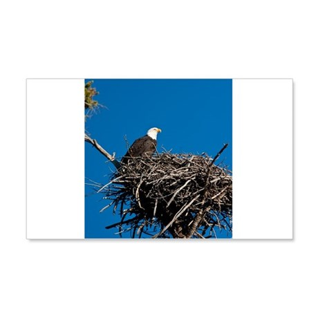 Bald Eagle 22x14 Wall Peel