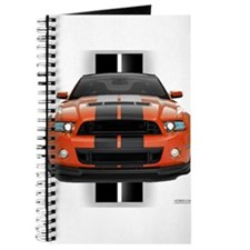 New Mustang GT Journal