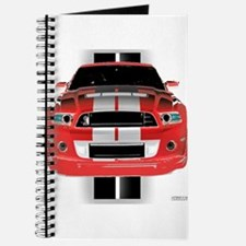 New Mustang GTR Journal
