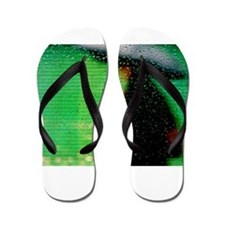 Umbrella Series: Green Flip Flops