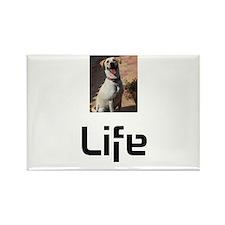 Dog Life Rectangle Magnet