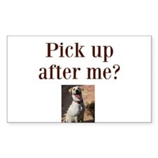Pick up after me? Decal