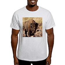 The Waterhole T-Shirt