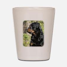 Rottweiler 9R047D-039 Shot Glass