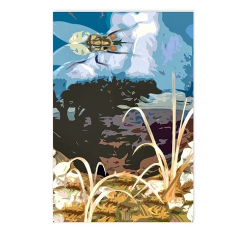 Fly On The Mountain Postcards (Package of 8)