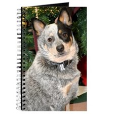 AustralianCattleDog-BlueHeeler Journal