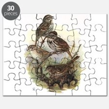 Song Sparrow Puzzle