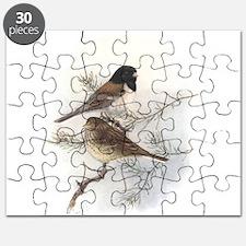 Dark-eyed Junco Puzzle