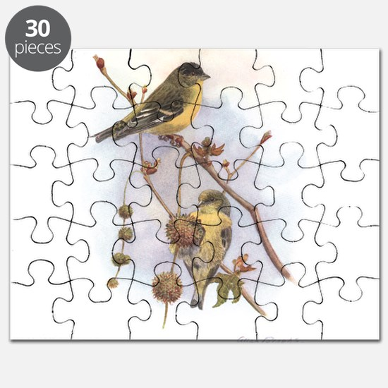 Lesser Goldfinch Puzzle