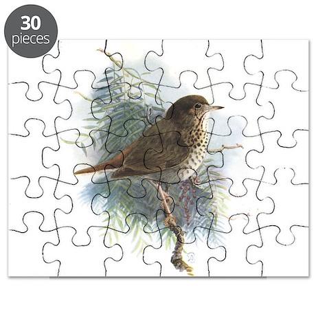 Hermit Thrush 1 Puzzle