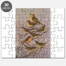 Western Warblers Puzzle
