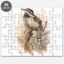 Cactus Wren Puzzle