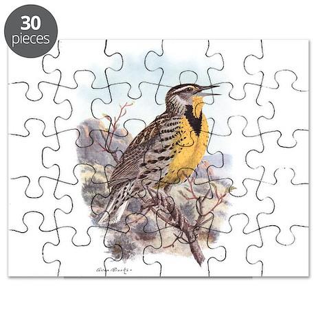 Western Meadowlark Puzzle