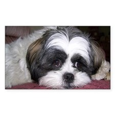 Cute Shih Tzu Dog Sticker (Rectangular)