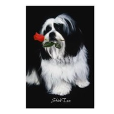Shih Tzu Dog Postcards (Package of 8)