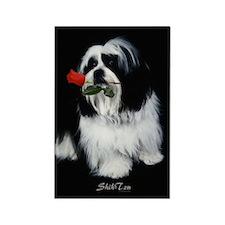 Shih Tzu Dog Rectangle Magnet