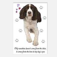 English Springer Spaniel Postcards (Package of 8)