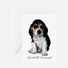 Beagle Puppy Dog Greeting Cards (Pk of 10)