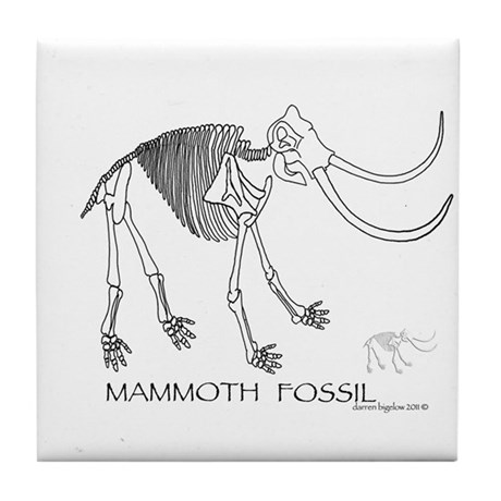 Mammoth Fossil Tile Coaster