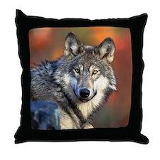 Wolf Photograph Throw Pillow