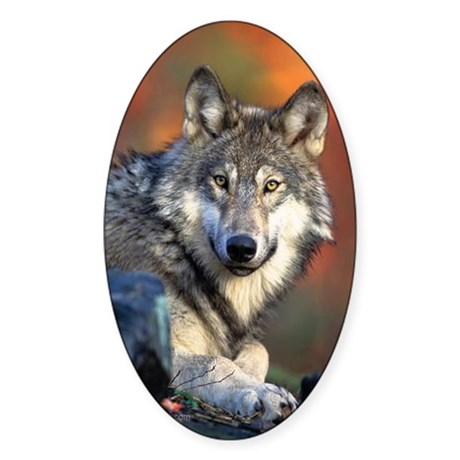 Wolf Photograph Sticker (Oval)