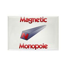 Monopole Rectangle Magnet (10 pack)