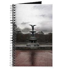 Central Park Journal