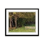 Bench In Forest Framed Panel Print