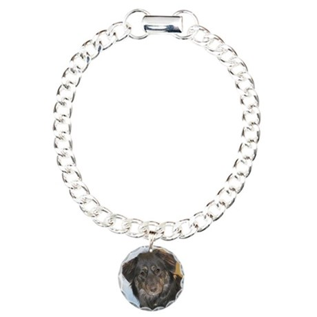 Australian Shepherd Mix Photo Charm Bracelet, One